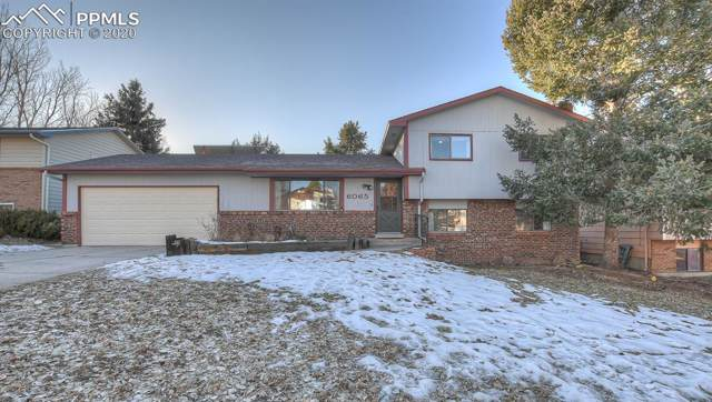 6065 Little Johnny Drive, Colorado Springs, CO 80918 (#7598814) :: 8z Real Estate