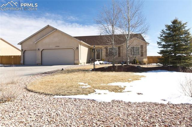 11124 Allendale Drive, Peyton, CO 80831 (#7599841) :: Tommy Daly Home Team