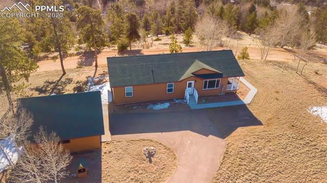 116 Pinon Lane, Florissant, CO 80816 (#7600957) :: Action Team Realty