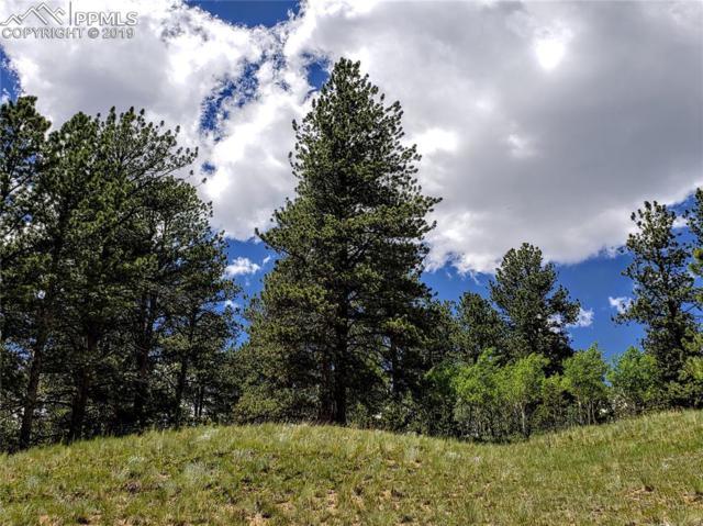 461 E Bison Creek Trail, Florissant, CO 80816 (#7602692) :: CC Signature Group