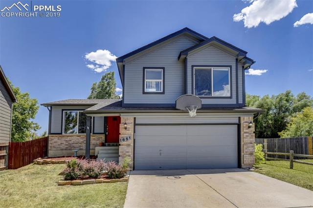 1651 S Canoe Creek Drive, Colorado Springs, CO 80906 (#7606496) :: Tommy Daly Home Team