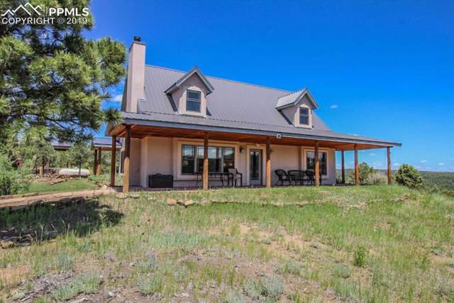 23580 Big Horn Drive, Aguilar, CO 81020 (#7607289) :: Tommy Daly Home Team