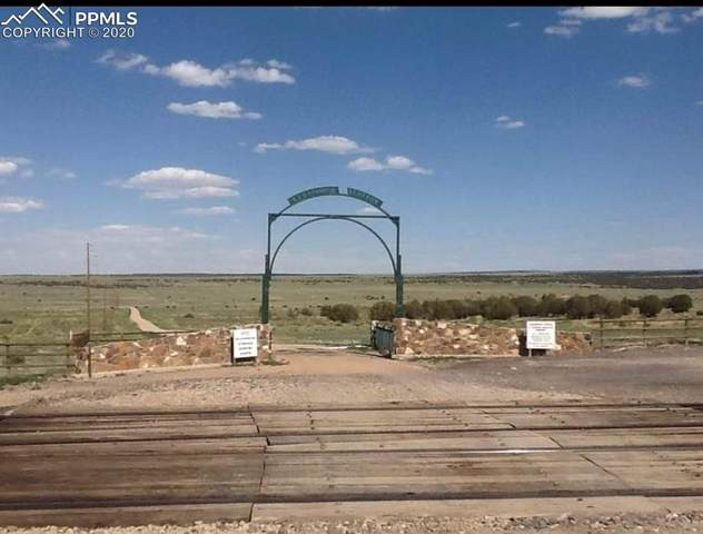 Lot 54 Cedarwood Lane, Pueblo, CO 81004 (#7608773) :: The Treasure Davis Team