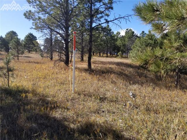 LOT 24 Unknown, Colorado Springs, CO 80908 (#7610273) :: Jason Daniels & Associates at RE/MAX Millennium