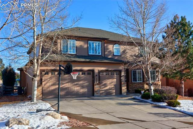 517 Saber Creek Drive, Monument, CO 80132 (#7613998) :: The Harling Team @ HomeSmart