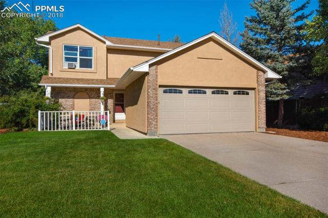 230 Coker Place, Colorado Springs, CO 80911 (#7616343) :: CC Signature Group