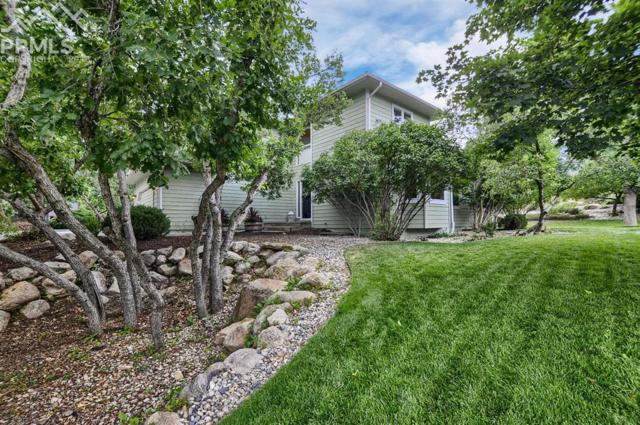 135 Broadmoor Hills Drive, Colorado Springs, CO 80906 (#7626273) :: Jason Daniels & Associates at RE/MAX Millennium