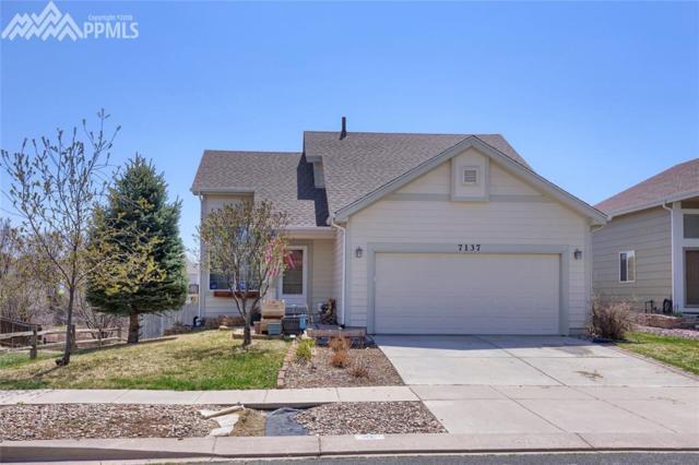 7137 Arrowroot Avenue, Colorado Springs, CO 80922 (#7627003) :: CENTURY 21 Curbow Realty