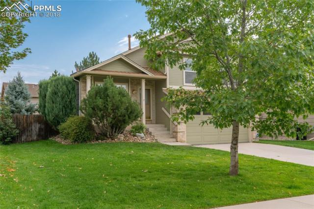 1334 S Canoe Creek Drive, Colorado Springs, CO 80906 (#7632566) :: The Hunstiger Team