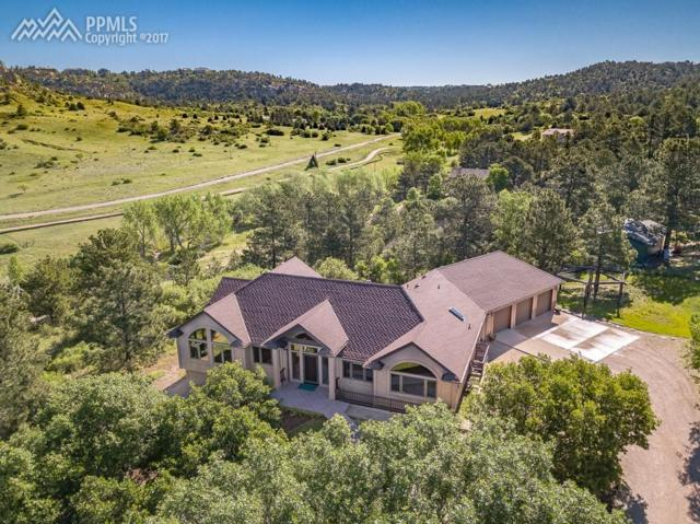 5175 Wild Rose Lane, Colorado Springs, CO 80918 (#7634543) :: 8z Real Estate