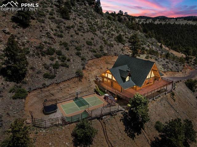 217 N Hill Drive, Bailey, CO 80421 (#7642306) :: Tommy Daly Home Team