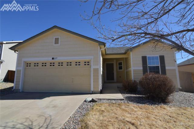 2377 Lexus Drive, Colorado Springs, CO 80910 (#7643744) :: Jason Daniels & Associates at RE/MAX Millennium