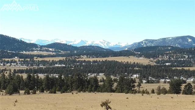 TBD Lakeview Trail, Guffey, CO 80820 (#7647138) :: 8z Real Estate