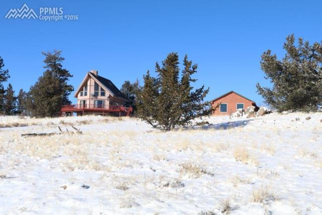1115 Willow Way, Jefferson, CO 80456 (#7647751) :: 8z Real Estate