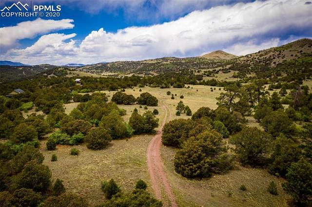 Deer Park Trail, Canon City, CO 81212 (#7647777) :: Action Team Realty