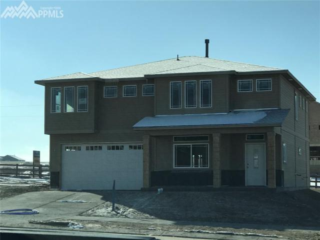 6481 Stonefly Drive, Colorado Springs, CO 80924 (#7648283) :: 8z Real Estate