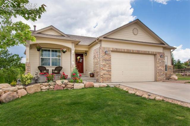 15776 Paiute Circle, Monument, CO 80132 (#7650676) :: Action Team Realty