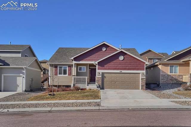 874 Deschutes Drive, Colorado Springs, CO 80921 (#7654153) :: Venterra Real Estate LLC