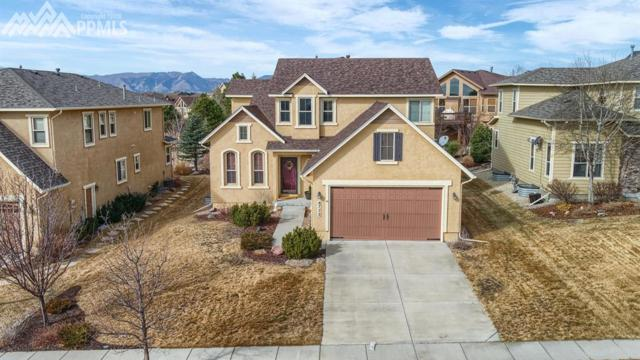 8772 Stony Creek Drive, Colorado Springs, CO 80924 (#7654540) :: The Daniels Team