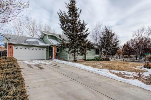 2915 Rolling Wood Loop, Colorado Springs, CO 80918 (#7656510) :: 8z Real Estate