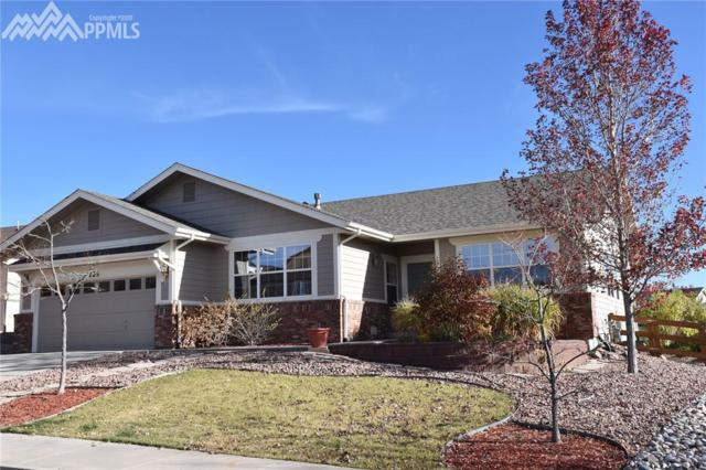 723 Witchhazel Court, Colorado Springs, CO 80921 (#7659852) :: Action Team Realty