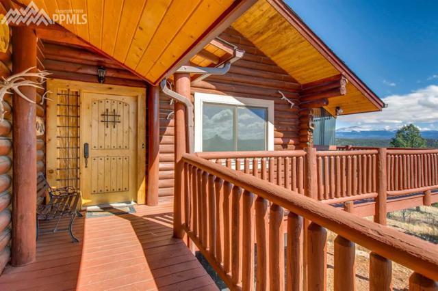 361 Crystal Peak Road, Florissant, CO 80816 (#7662476) :: 8z Real Estate