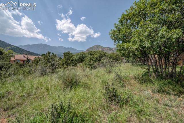 3175 N Electra Drive, Colorado Springs, CO 80906 (#7671089) :: CC Signature Group