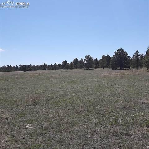 11535 Bison Meadows Court, Colorado Springs, CO 80908 (#7673433) :: Dream Big Home Team | Keller Williams