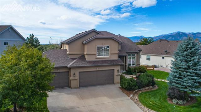 356 Fox Run Circle, Colorado Springs, CO 80921 (#7675536) :: Action Team Realty