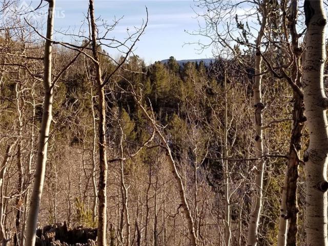 TBD Highway 67 Highway, Cripple Creek, CO 80813 (#7676558) :: 8z Real Estate