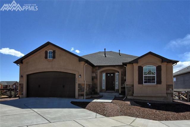 8083 Cinnamon Court, Colorado Springs, CO 80927 (#7677714) :: The Peak Properties Group