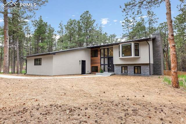 320 Mustang Way, Monument, CO 80132 (#7679758) :: Fisk Team, eXp Realty
