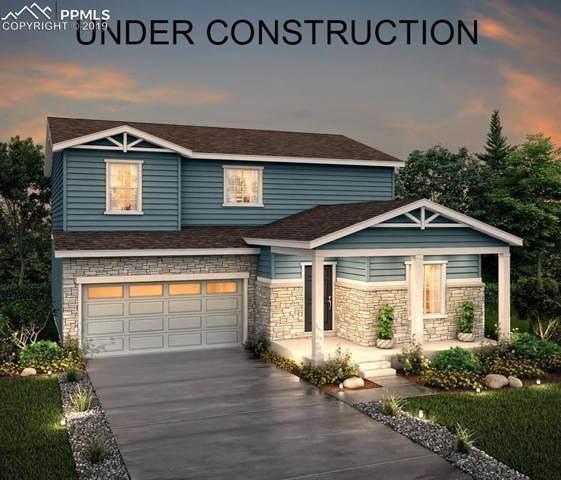 2057 Villageview Lane, Castle Rock, CO 80104 (#7680003) :: CC Signature Group