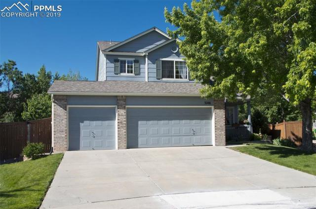 3246 Fernleaf Court, Castle Rock, CO 80109 (#7680104) :: Action Team Realty