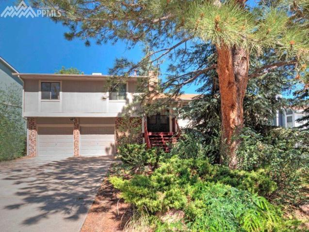 6314 Dewsbury Drive, Colorado Springs, CO 80918 (#7688006) :: CENTURY 21 Curbow Realty