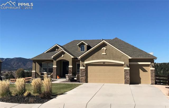 614 Woodmoor Acres Drive, Monument, CO 80132 (#7688620) :: Venterra Real Estate LLC