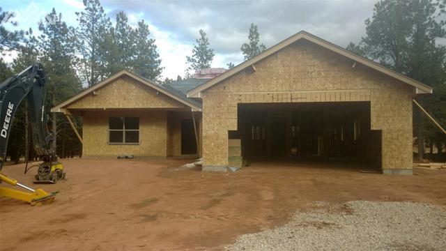 1333 Firestone Drive, Woodland Park, CO 80863 (#7696757) :: RE/MAX Advantage