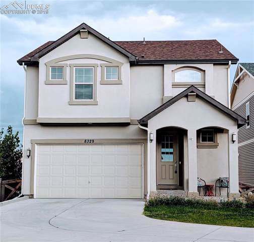 8329 Plumwood Circle, Colorado Springs, CO 80927 (#7705811) :: The Kibler Group
