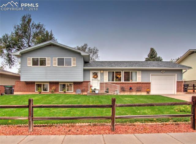 550 Raemar Drive, Colorado Springs, CO 80911 (#7707260) :: 8z Real Estate