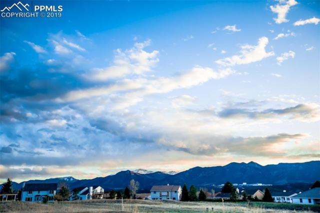 14148 Stone Eagle Place, Colorado Springs, CO 80921 (#7708563) :: Fisk Team, RE/MAX Properties, Inc.