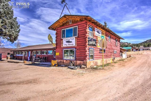 38283 W Highway 24 Highway, Lake George, CO 80827 (#7716842) :: The Hunstiger Team