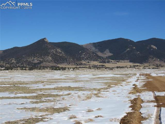 89 Montezuma Road, Hartsel, CO 80449 (#7720288) :: 8z Real Estate