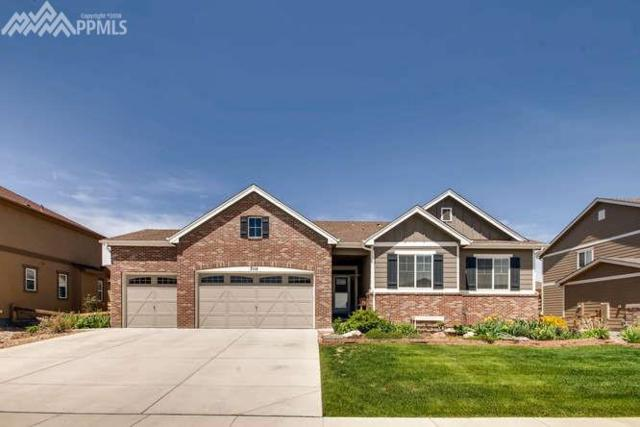 7114 Golden Acacia Lane, Colorado Springs, CO 80927 (#7720955) :: 8z Real Estate
