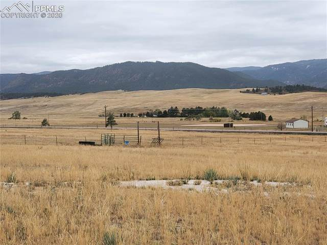 10686 S Spruce Mountain Road, Larkspur, CO 80118 (#7727779) :: 8z Real Estate
