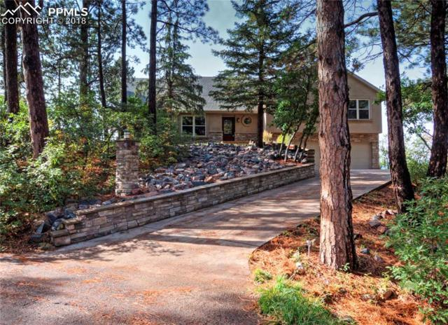 545 Silhouette Way, Monument, CO 80132 (#7728203) :: The Dunfee Group - powered by eXp Realty