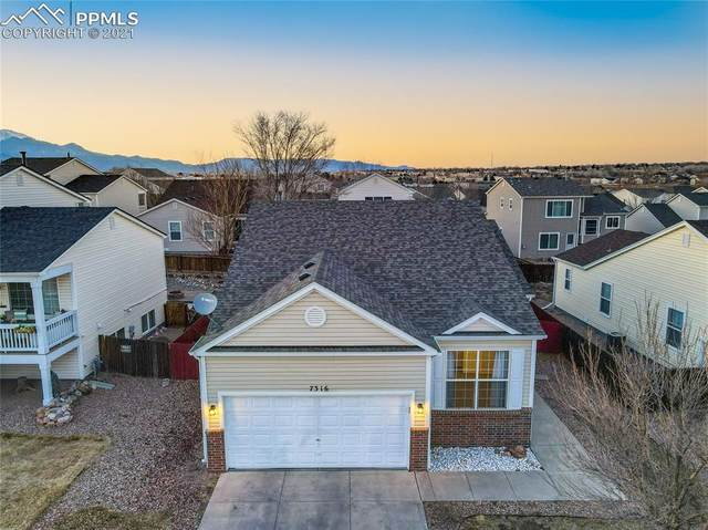 7316 Brush Hollow Drive, Fountain, CO 80817 (#7729388) :: Tommy Daly Home Team