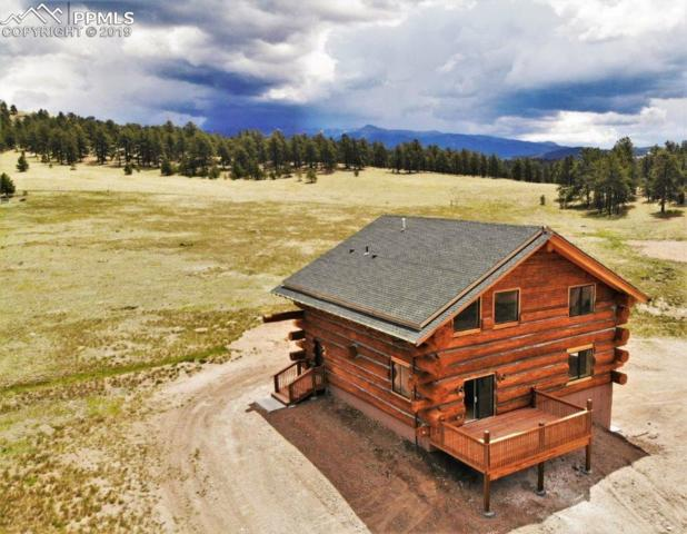 654 High Pasture Road, Florissant, CO 80816 (#7730049) :: Perfect Properties powered by HomeTrackR
