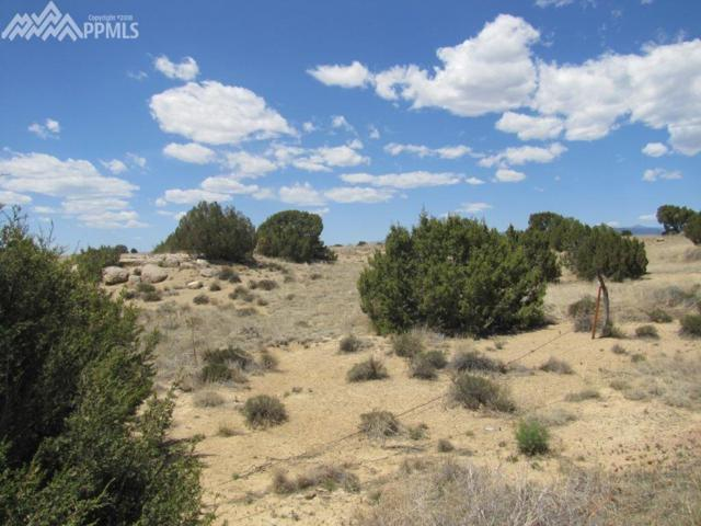 TBD R Street, Penrose, CO 81240 (#7730553) :: Colorado Home Finder Realty