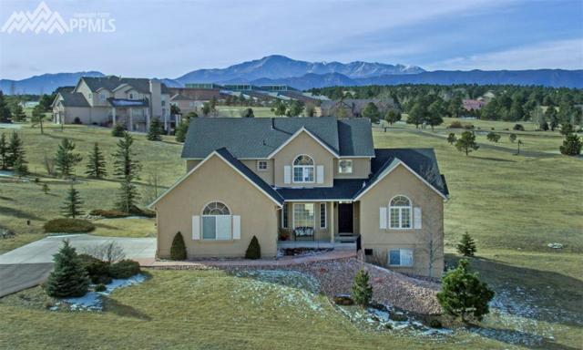 19220 Sixpenny Lane, Monument, CO 80132 (#7731088) :: 8z Real Estate