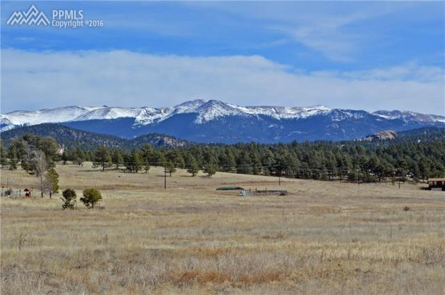 Lot 45A Deer Mountain Road, Florissant, CO 80816 (#7731737) :: 8z Real Estate